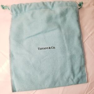 Tiffany & Co Teal Pouch
